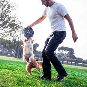 Brinquedo Frisbee (disco) para cães