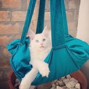 Cama Trapeze suspensa para gatos com almofada para ele dormir