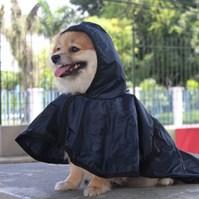 Produto Capa de chuva Pet Style para proteger seu cachorro da chuva