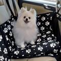 Capa pet impermeável PLUS PREMIUM 45cm para levar cães no carro