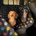 Capa pet impermeável PLUS PREMIUM para levar cães no carro (Protege banco e portas!)