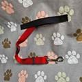 Capa pet impermeável PLUS Standard para levar cães no carro