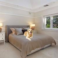 Produto Cobre Leito Elegance Impermeável para cães e gatos na cama