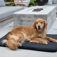 Produto Colchonete cama impermeável Pet Clean para cães (fácil limpeza)