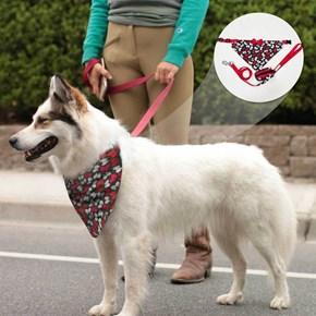 Coleira Bandana com guia e porta saquinhos Pet Style para cães