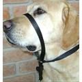 Coleira cabresto Correction anti puxão para cães