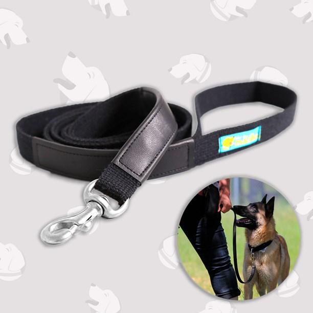 Guia profissional Dog Trainer - passeio com conforto e segurança
