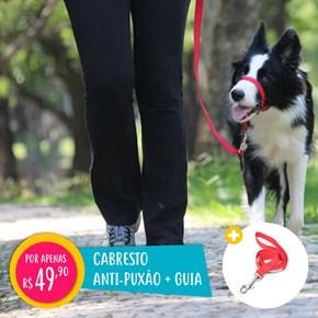 Kit passeio pet anti puxão Coleira Correction + Guia + Cata cacas