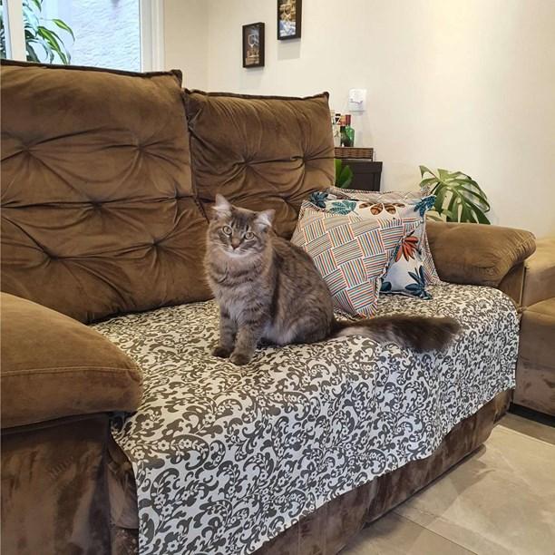 Manta Protection Pet impermeável para cães na cama ou sofá
