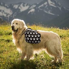 Mochila Adventure para cães