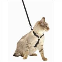 Produto Peitoral Cat Walk com guia para passear ou levar gatos no carro