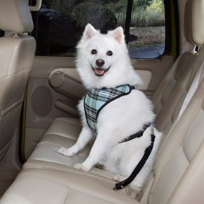 Peitoral de segurança Confort Travel para passeio ou uso no carro