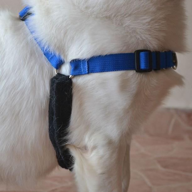 Protetor Soft para axila do cachorro (usa junto com o peitoral)