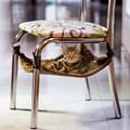 Rede para gatos Confort Cat para uso em cadeiras