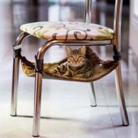 Produto Rede para gatos Confort Cat para uso em cadeiras